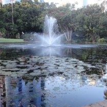 Brisbane Botanical Gardens